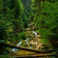 Šumavské vodopády