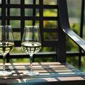 Vinobraní pro dva