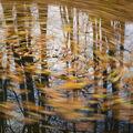 podzimní kolotoč