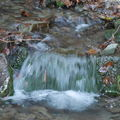 Voda živá ......