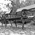 Opuštěný park