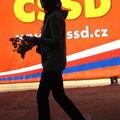 Růže pro Zimulu