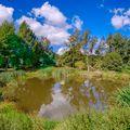 Kapesní rybník
