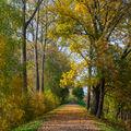 podzimní poklidné odpoledne