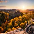 Podzimní jaro