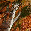 Podzimní vodo(listo)pád