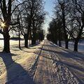 U hradu Veveří v zimě.....