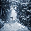 První sníh na Dvoračkách