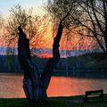 Západ slunce u rybníka