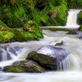 Krása řeky Doubravy