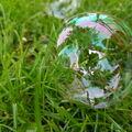 Život v bublině