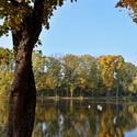barvy podzimu na rybníku
