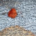 Vzpomínky jsou jak spadané listí...