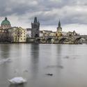 Labutí duchové na Vltavě