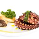chobotnice II ...
