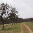 Klášterní procházka