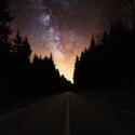 Cesta přes les