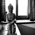 In the light of Buddha