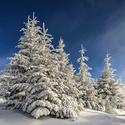 Vzpomínka na sníh