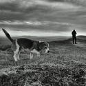 Pes a jeho pán