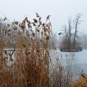 Na jezeře