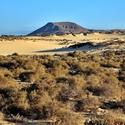 Fuerteventura V