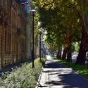 Podzimní ulice
