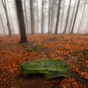 U zeleného kamene