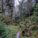 Ve skalním údolí