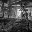 Jitro na  slati - Šumava