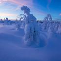 Nedotčená zimní Šumava