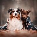 Charlie & Woody