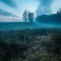 Pod mlhou