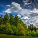 Májová zeleň