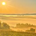 Zlatavé ráno