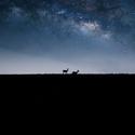 Romantika pod hvězdami