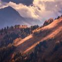 Oranžový kopec