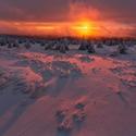 Zimní barevné ráno