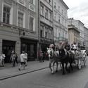 Živé Krakowské ulice
