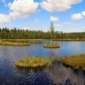 Chalupská slať - panorama