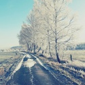 Mrazivá cesta