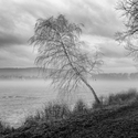 Šumvaldský rybník