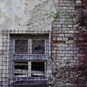 Hlavou zeď neprorazíš, musíš zapustit kořeny