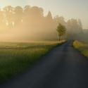 Skvostné ráno