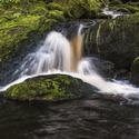 Filipohuťský potok I