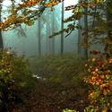 Beskyský podzim