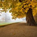 Podzim v plné parádě