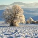 Zima v Turci II