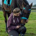 Nikča a kůň