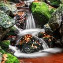 Černý potok Jizerky